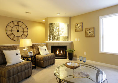 Burton-Ridge-Interior---Living-Room-(2)